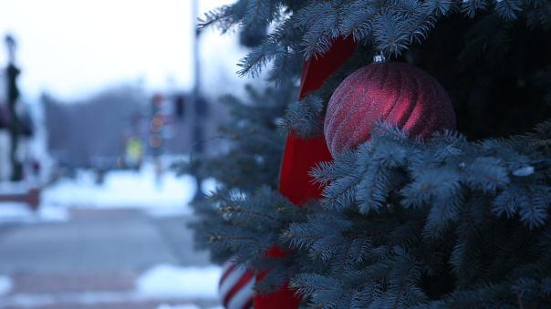 Christmas 2 Pic
