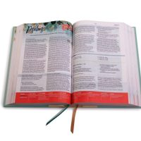 CSB Study Bible For Women - Book Review and Highest Recommendation