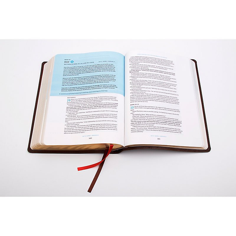 Day-by-Day Chronological Bible – Review
