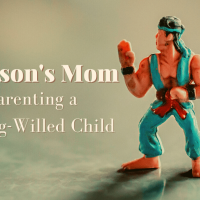 Samson's Mom: Parenting a Strong-Willed Child